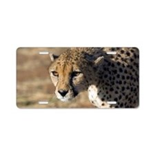 Cheetah Aluminum License Plate