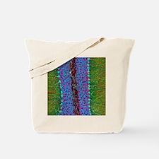 Cerebellum tissue, light micrograph Tote Bag