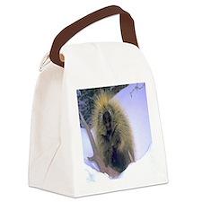 Porcupine Canvas Lunch Bag