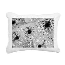 Cell nuclei with chromat Rectangular Canvas Pillow