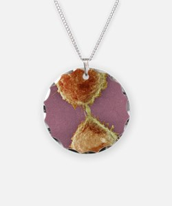 Cell division, SEM Necklace