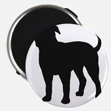 American Bulldog Magnet