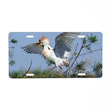 Cattle egret in breeding pl Aluminum License Plate