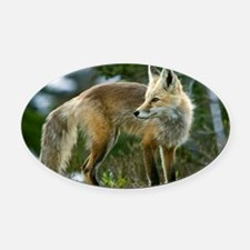 Cascade red fox Oval Car Magnet