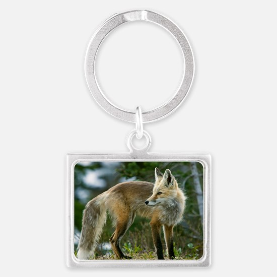 Cascade red fox Landscape Keychain