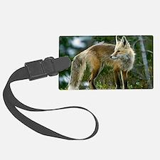 Cascade red fox Luggage Tag