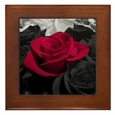 Red rose pop color Framed Tile