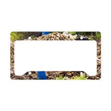 Charcoal production site License Plate Holder