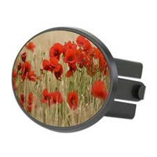 Poppies growing wild Oval Hitch Cover