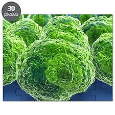 Cancer cells, artwork Puzzle