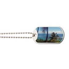 San Juan Magnet Dog Tags