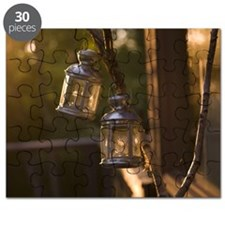 Lanterns hanging from branch Puzzle