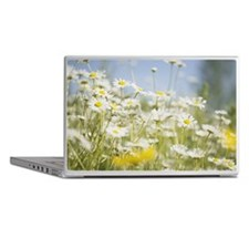 Field of daisies Laptop Skins