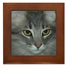 Funny Cat lovers Framed Tile