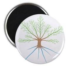 Tree 6-12 Magnet