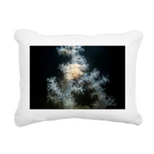 c0043911 Rectangular Canvas Pillow