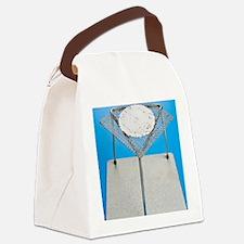 c0047689 Canvas Lunch Bag