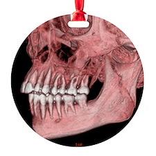c0070806 Ornament