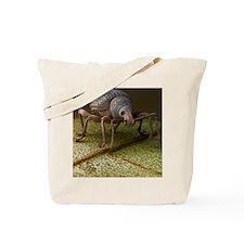 c0036570 Tote Bag
