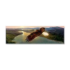 Bald eagle in flight, artwork Car Magnet 10 x 3