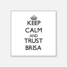 Keep Calm and trust Brisa Sticker