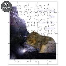 Spirit Squirrel Puzzle