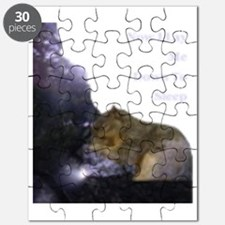 Spirit Squirrel Puzzle