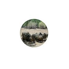 Javelina - Wild Pigs Mini Button