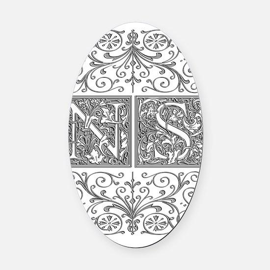 NS, initials, Oval Car Magnet