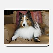 Its a dogs life Mousepad