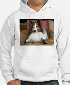 Its a dogs life Hoodie