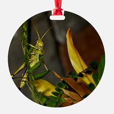 Grasshopper Ornament