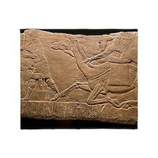 Assyrian Relief Throw Blanket