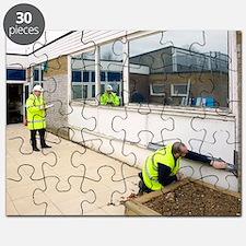 Asbestos removal Puzzle