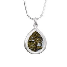Atlas Cedar (Cedrus atla Silver Teardrop Necklace