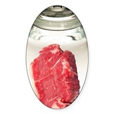 Artificial meat, conceptual image Decal
