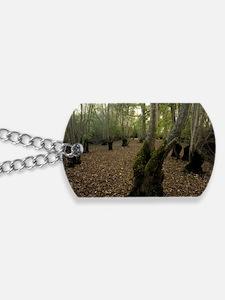 Ash trees (Fraxinus excelsior) Dog Tags