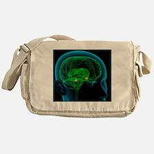 Amygdala in the brain, artwork Messenger Bag