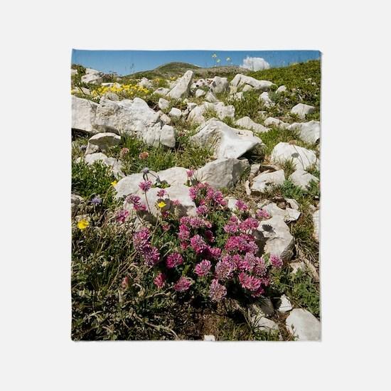 Anthyllis montana Throw Blanket