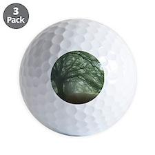Ancient Beech woodland Golf Ball