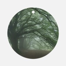 Ancient Beech woodland Round Ornament