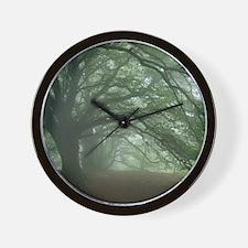 Ancient Beech woodland Wall Clock
