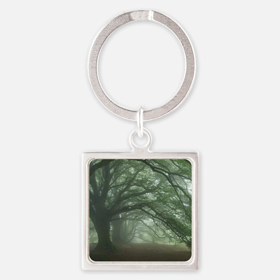 Ancient Beech woodland Square Keychain
