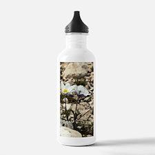 Alpine Pasque Flower ( Water Bottle