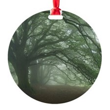 Ancient Beech woodland Ornament
