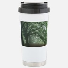 Ancient Beech woodland Travel Mug