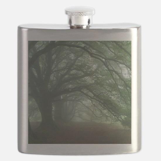 Ancient Beech woodland Flask