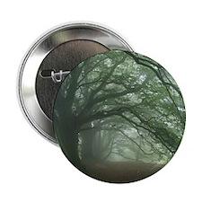 """Ancient Beech woodland 2.25"""" Button"""