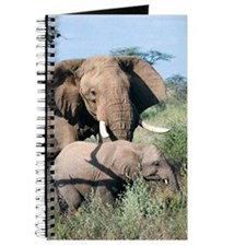 African elephant and calf Journal