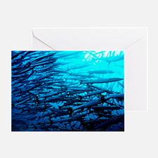 Blackfin barracuda shoal Greeting Card